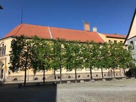 [(c): Abteilung Stadtgrün/Stadt Halberstadt]