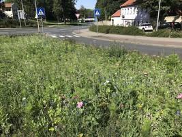 [(c): Stadt Halberstadt/Bereich Stadtgrün/Sauberkeit]