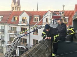 [(c): Stadt Halberstadt/Pressestelle]