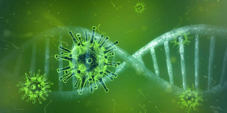 Alle aktuellen Informationen zum Coronavirus (COVID-19)
