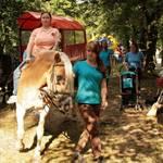 Parkfest 2014 - Foto: Peter Windhövel