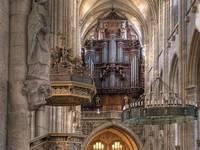 Entdecken Sie die Königin der Musikinstrumente in der Martinikirche und im Halberstädter Dom