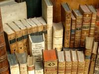 Zwischen den unzähligen Buchseiten von Gleim, Goethe, Kafka, Kluge & Co. verstecken sich viele spannende Geschichten. Über diese sowie über die zwischenmenschlichen Anekdoten berichtet Dr. Ute Pott während des Halberstädter Literaturspaziergangs.