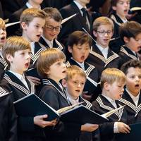 Bach und mehr: MDR-Musiksommer bringt Thomanerchor nach Halberstadt