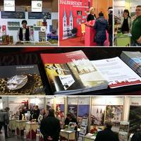 Die Halberstadt Information präsentiert die Domstadt auf vielen Messen. Mit dabei haben die Mitarbeiter verschiedene Prospekte um die einzelnen Angebote vorzustellen.