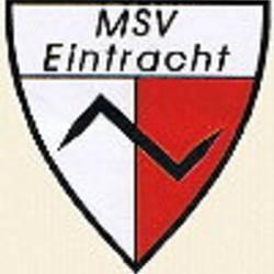 msv_logo.jpg