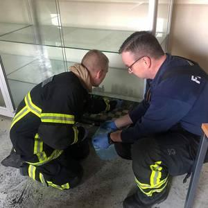 (c) Feuerwehr Halberstadt