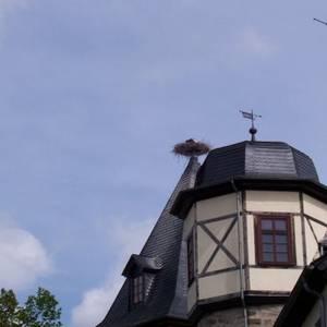 Schloss Emersleben