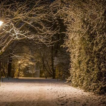 Halberstadt im Winter - Karsten Hebbel