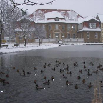 Torteich im Winter in Halberstadt, 2013 - Foto:Siegfried Sprotte