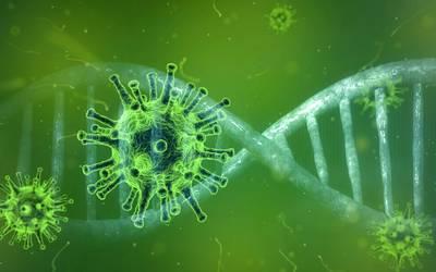 Informationen der Stadt Halberstadt zur Situation Coronavirus