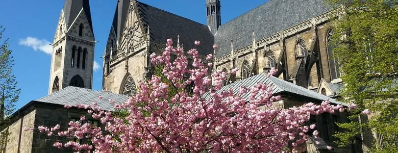 Halberstädter Dom im Frühjahr [(c) Stadt Halberstadt, Neue Medien]