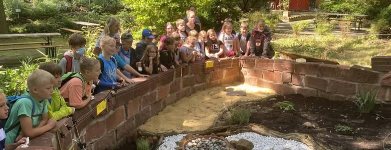 Die Kinder der 3. Klasseder GS Dr. Emanuel Lasker aus Ströbeck begrüßen die neuen Bewohner der Schildkrötenanlage [(c) Stadtmarketing/Öffentlichkeitsarbeit]