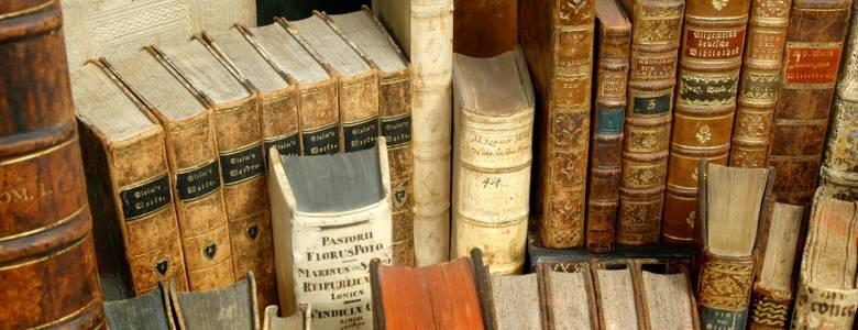 Zwischen den unzähligen Buchseiten von Gleim, Goethe, Kafka, Kluge & Co. verstecken sich viele spannende Geschichten. Über diese sowie über die zwischenmenschlichen Anekdoten berichtet Dr. Ute Pott während des Halberstädter Literaturspaziergangs. [(c) Gleimhaus Halberstadt]