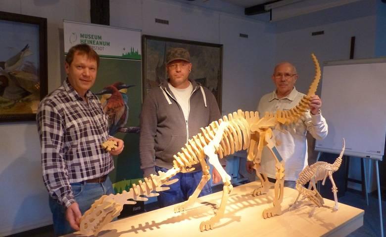 Dino-3D-Puzzle XXL – Neue Attraktion im Heineanum [(c) Stadt Halberstadt/Pressestelle]