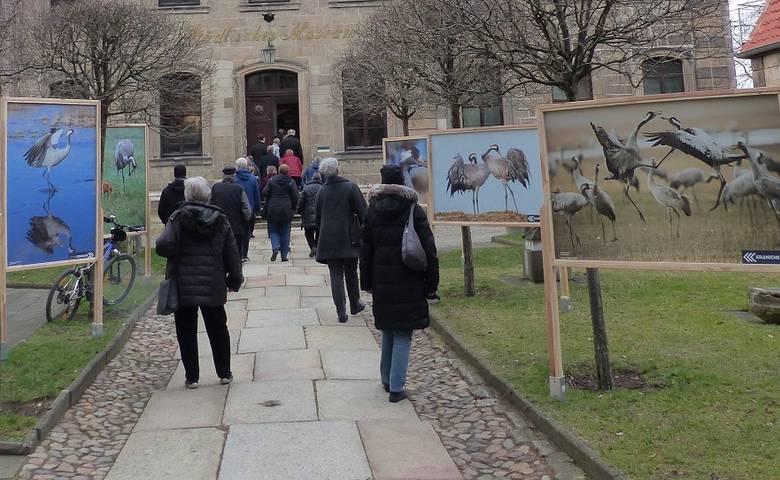"""Kraniche """"Vögel des Glücks"""" – Ausstellung mit 180 Gästen eröffnet [(c) Stadt Halberstadt/Pressestelle]"""