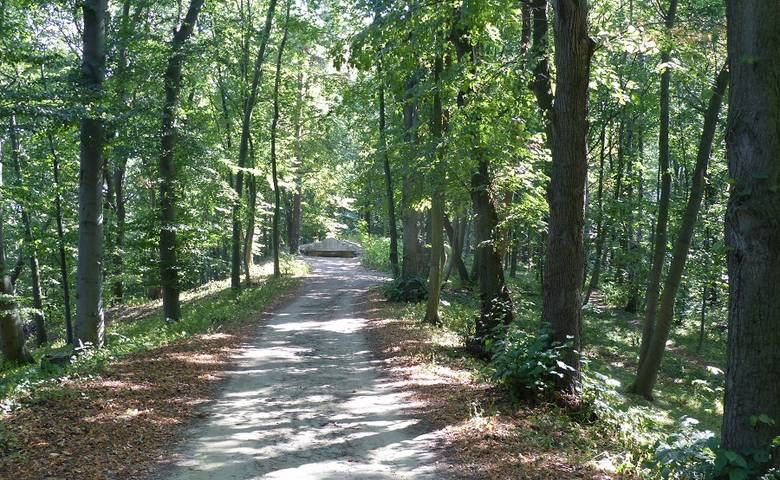 Philosophische Spaziergänge durch den Landschaftspark Spiegelsberge [(c) Stadt Halberstadt]