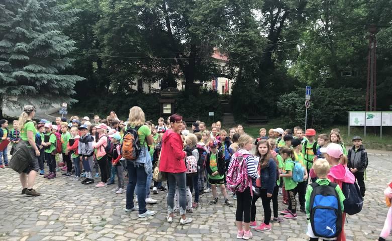 """Gewinner Waldjugendspiele - """"Dachse"""", """"Wildschweine"""" und """"Rehe"""" [(c) Stadt Halberstadt/Pressestelle]"""