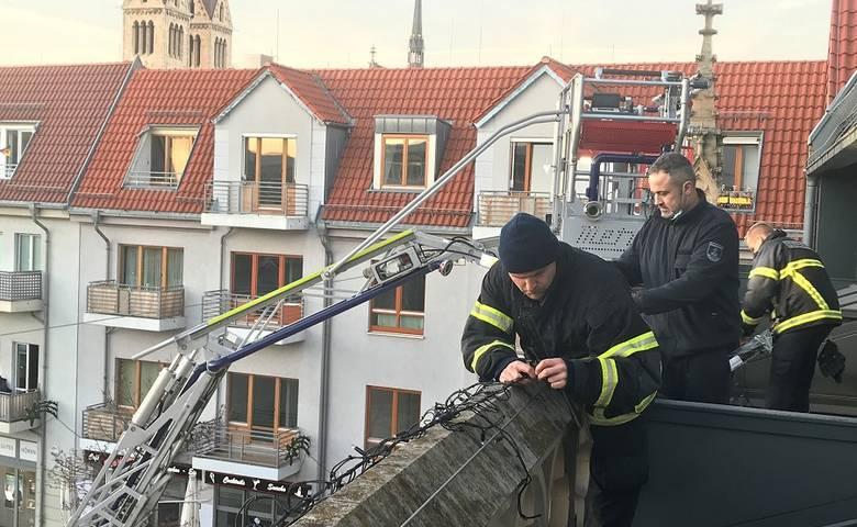 Rathaus bekommt erstmals eine Weihnachtsbeleuchtung [(c) Stadt Halberstadt/Pressestelle]