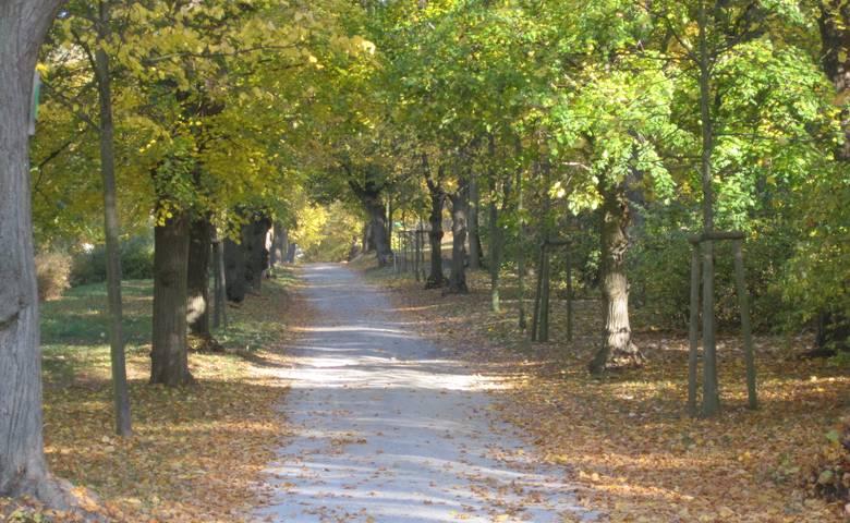Park Spiegelsberge